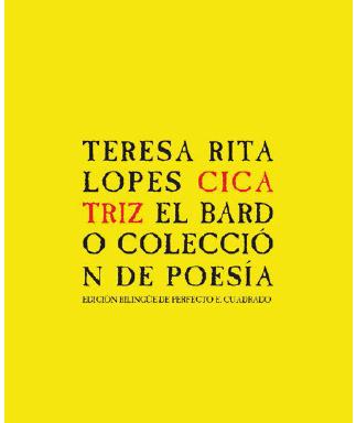 Teresa Rita Lopes – Cicatriz